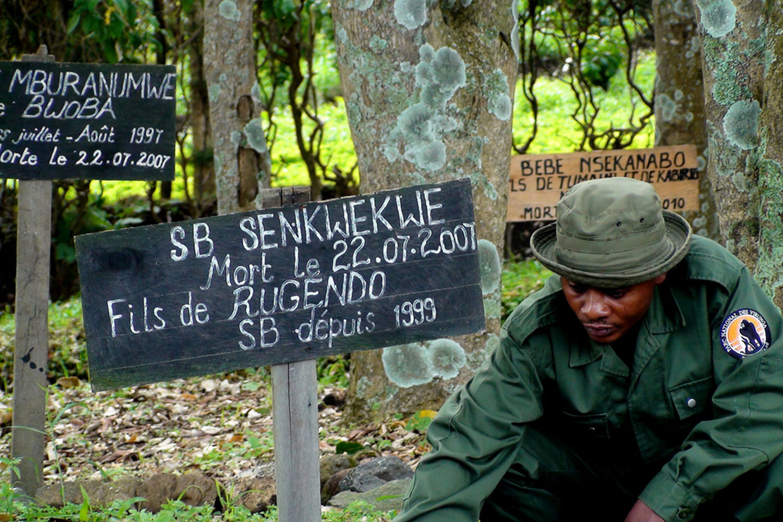Virunga National Park Ranger